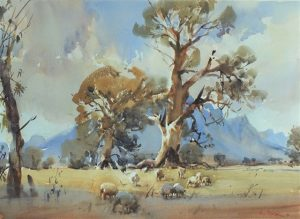 watercolour painting by Ross Paterson titled Grampians Gums Dunkeld